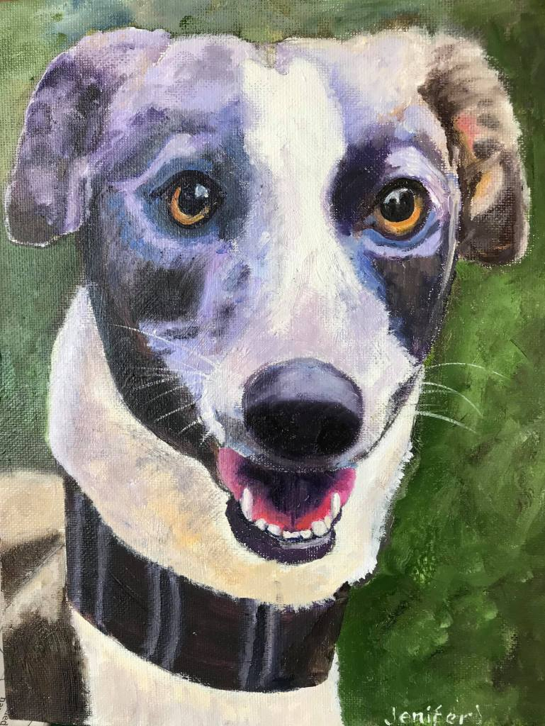 Rescue greyhound called Kali in oil
