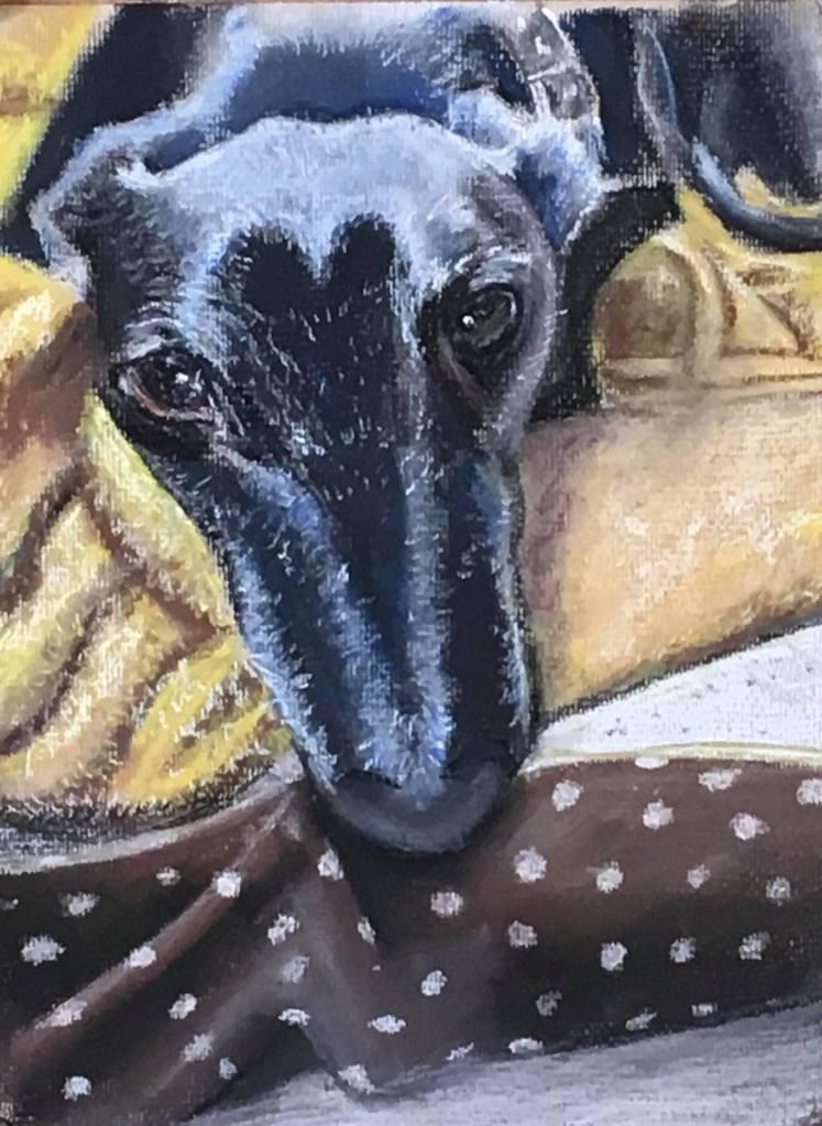 Rescue greyhound called Samba in pastels