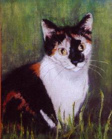Splodge cat in pastels