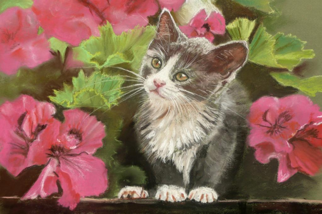 Cat enjoying the geraniums in pastel