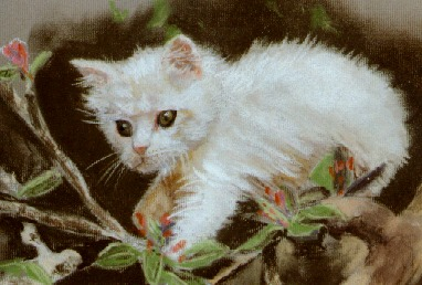 Teddy up a cherry tree in pastel